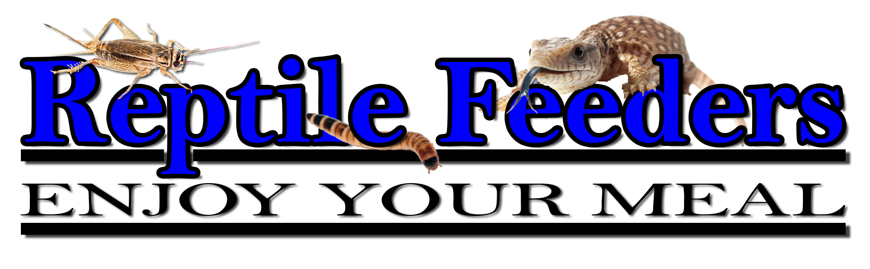 Reptile Feeders :: Enjoy Your Meal